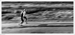 The Long Haul 25/365 (John Penberthy LRPS) Tags: 25jan18 365the2018edition 3652018 d750 day25365 johnpenberthy nikon richmondpark blackandwhite blur fit fitness mono monochrome people training