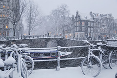 Amsterdam canal cruise keep in service as long as possible (B℮n) Tags: bike snow covered bikes bicycle holland netherlands canals winter cold street anne dutch people scooter gezellig cafés snowy snowfall atmosphere colorful walk walking cozy light corner water canal weather cool sunset file celcius mokum pakhuis grachtengordel unesco world heritage sled sleding slee seagull nowandthen meeuw bycicle 1°c sun shadows sneeuw brug slippery glad flakes handheld wind code rood amsterdam umbrella colors keizersgracht astoria annefrank cruise boat 100faves topf100