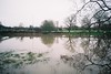 River, refelctions (knautia) Tags: riveravon hightide bristol england uk february 2018 river avon film ishootfilm fuji fujicolor 100iso olympus xa2 olympusxa2 raining refelction