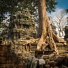 Ta Prohm temple, Cambodia (isowan) Tags: cambodia siemreap kambodža angkorwat krongsiemreap kh