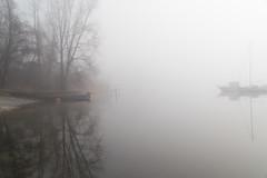 Winter fog in Northern Italy (Phototravelography) Tags: italia italy lagomaggiore lombardia lombardy ranco fog lake walk fccreflections winter light mist reflection tree overcast sky ngc