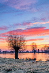 Sonnenaufgang am Brejpott (jwfoto1973) Tags: sonnenaufgang sunrise sky spiegelung reflection niederrhein natur nature kleve deutschland germany d7100 nikon johannesweyers kopfweiden kopfweide wasser wolken water landschaft landscape