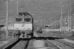 domo II set 61 #28 (train_spotting) Tags: beuracardezza domoii tigre tigrone e652007 trenitaliacargo trenitalia ticargo divisionecargo mir merciitaliarail nikond7100