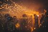 (louistop(翼賢)) Tags: 臺南 台南市 台灣 tw taiwan festival fireworks beehives 蜂炮 鹽水蜂炮 沖天炮 元宵節 民俗活動 台南 鹽水 yanshui wutemple canon 5d4 gps 5dmarkiv ff ef2470 highiso fullframe 82mm stc