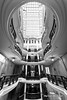 Classic building (dmelchordiaz) Tags: classic building design black white bw step stairs inside interior light shadow