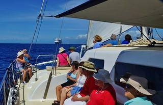 On A Catamaran Under Sail