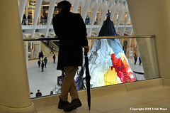 The Observer Being Observed (Trish Mayo) Tags: stainlesswasteless oculus westfieldwtc oculuswtc oculusworldtradecenter