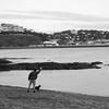Fetch (angelolabella) Tags: beach dog man fetch companion