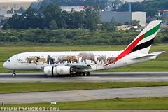 A6-EEQ (renanfrancisco) Tags: emirates emiratesairlines ek uae airbus a380 a380800 a388 airbusa380 airbusa380800 oneworld gru sbgr gruairport guarulhosairport reverso morrinho landing pouso airport aeroporto aeropuerto airlines spotting a6eeq