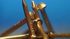 Less Than - Nine 1/2 Inch Nails (_bizonel) Tags: macromondays lessthananinch nails nine 7dwf