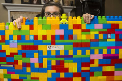 Day 4002 (evaxebra) Tags: wh wah bricks blocks megablocks legos wall colorful colors build