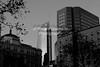 1 (2) (Rainer Quesada Photography) Tags: losangeles night nightphotography urban city downtown draggingshutter lightstreaks photoshop architecture buildings street streetlights usa southerncalifornia framing light