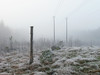 Powerscape 55 (Lars Nordström) Tags: fog pylon landscape