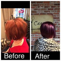 Purple hair from last fall (thischarmingamy) Tags: canvassalon andovermassachusetts shorthair purplehair