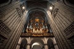 DSC_6293 (christophe_boron) Tags: orgue collégiale eglise pierre plafond arcade voûte gris blanc hauteur contreplongée nikond750 irix15mm irix