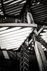 NFX3891 (Toonfish 67) Tags: london londoncity nikond700 nikon d700 streetphotography blackwhite underground camdentown camdenlock saintpancras towerbridge londoneye toweroflondon