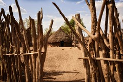 Karo Compound (Rod Waddington) Tags: africa african afrique afrika äthiopien ethiopia ethiopian ethnic etiopia ethnicity ethiopie etiopian omovalley omo outdoor omoriver karo tribe traditional tribal hut compound wood wooden fence culture cultural landscape