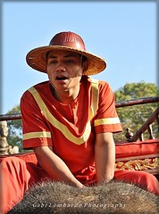 riding the elephant (Cambodia) (gabi lombardo) Tags: man red hat cappello hut elefante elephant rider