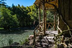 Parque Natural del Señorío de Bertiz, Navarra (Jose Antonio Abad) Tags: baztán merindaddepamplona oronozmugaire señoriodebertiz agua joséantonioabad naturaleza paisajeurbano arquitectura navarra españa pública es
