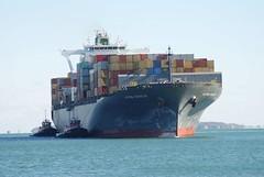 Astrid Schulte (jelpics) Tags: astridschulte freedom justice tug tugboats commercialship containership cargoship merchantship boat boston bostonharbor bostonma harbor massachusetts ocean port sea ship vessel