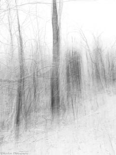 Winter's Wicked Waltz