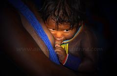 Kayapo (pguiraud) Tags: sergeguiraud brésil brasil brazil picture kayapo gorotire metuktire tribu tribe ethnie ethnic amazonie amazon amazone indio indien indian matogrosso forêttropicale portrait artducorps ornementcorporel plateaulabial