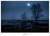 moonlighT (VWBully1956) Tags: mond moon nachts nacht night düster landschaft mondlicht blau blue bleu märchen