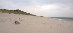 Sylt (maramillo) Tags: germany robbe beach maramillo friendlychallenges pregame
