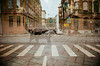 28010020_edited (koshkinotime) Tags: соснафотограф 35mm улица multiexposition analog nikonf5 sosna saintpetersburg