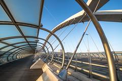 Pont du Troisième Millénaire - SARAGOSSE (daumy) Tags: pont moderne architecture ligne fuite metal beton zaragoza aragón espagne es ville