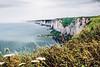 French Cliff (M4x G4x) Tags: cliff normandie océan verdure falaise brume nuageux vide bord calcaire côte