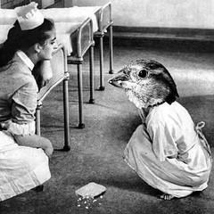Rehabilitation session at Everbleak Hospital (Flamenco Sun) Tags: mentalillness disturbing dark strange bizarre bird weird hospital everbleak