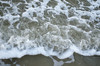 DSC_8294 (Tripping On Change) Tags: southcarolina harborisland island beaufort cemetery ocean beach shrimpshack alligator mussels nature