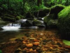 Stream (Guilherme GMP) Tags: challengeyouwinner cyunanimous