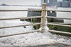 DSC_1030 (cdowney1981) Tags: newyorkcity nyc hudsonriver snow