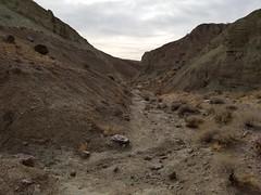 20180210_091929 (jason_brez) Tags: california canyon nature landscape desert