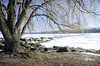 """An """"Erie"""" Step Away From The Burgh (Nathan Gentry) Tags: lakeerie lake erie frozen ice snow water cold rocks boulders parks ohio cleveland pier bridge shadows weather anchor people fishers trees footprints workers nikon nikond7000"""