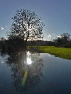 Floody Sun