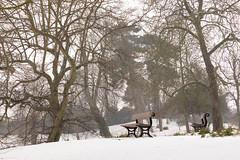 CP Snow | Feb 2018-69 (Paul Dykes) Tags: london england unitedkingdom gb crystalpalace uksnow londonsnow uk crystalpalacepark