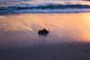 _MG_9785 (Jagot) Tags: canonef50mmf14usm canoneos6d dominicanrepublic beach sea ocean seaweed sunlight reflection waves caribbean puntacana