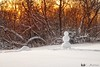 180116-38 Le bonhomme qui regardait le soleil (clamato39) Tags: parclessaules villedequébec provincedequébec québec canada hiver winter snow neige coucherdesoleil sunset nature bonhommedeneige snowman