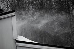 IMG_0031 (www.ilkkajukarainen.fi) Tags: lumi snow storm myrsky winter talvi pyry suomi finland eu europa scandinavia suomi100 espoo visit travel traveling blackandwhite mustavalkoinen monochrome