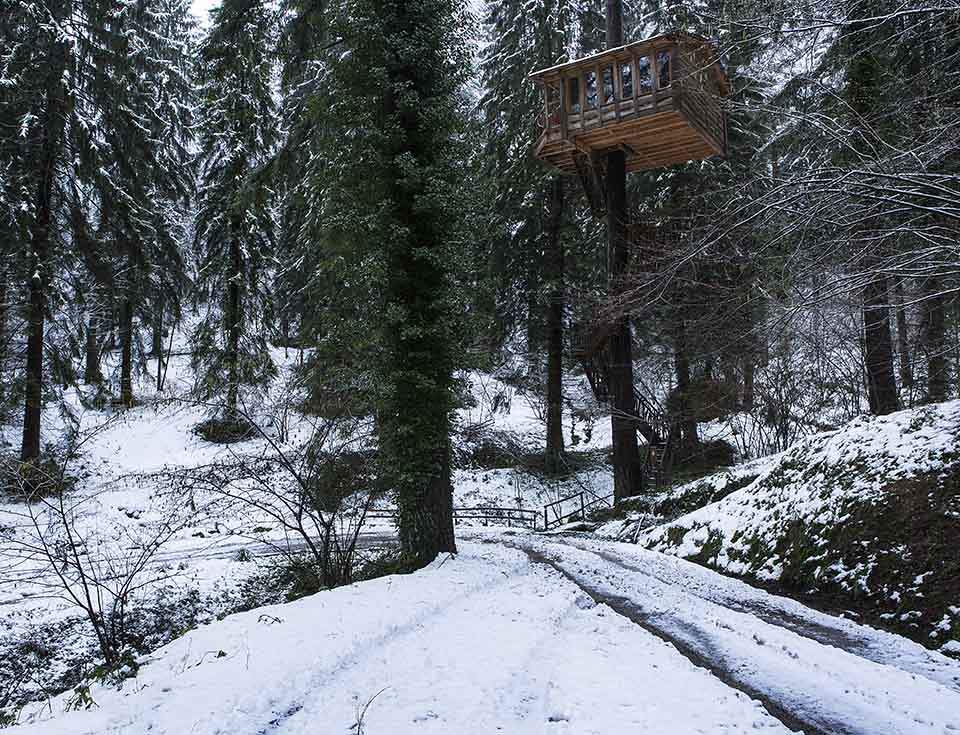The world 39 s best photos of nieve and rbol flickr hive mind - Casa arbol zeanuri ...