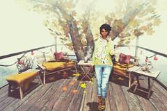 The beautiful simple things in life (SueGeeli DeCuir) Tags: raindale furniture platform tree bench pillow table fauxfur imcollection jeans top designershowcase reign taketomi revoul maitreya lelutka hera pewpew hextraordinary secondlife virtualworld blogger baiastice welovetoblog