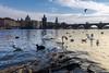 The Birds (JH Images.co.uk) Tags: prague birds city skyline water charlesbridge bridge czech clouds hdr dri