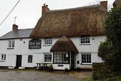 Manaccan, New Inn (Dayoff171) Tags: cornwall boozers unitedkingdom england europe pubs publichouses gbg gbg2018 kernow greatbritain