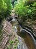 Watkins Glen State Park, 07.09.16 (gigi_nyc) Tags: watkinsglenstatepark watkinsglen newyork fingerlakes summer gorge