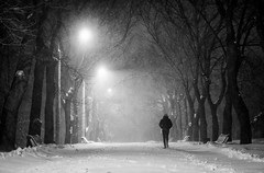 street (photoksenia) Tags: street night odessa blackandwhite bw people monochrome park winter snow