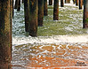 IMG_2181 Support (Cyberlens 40D) Tags: travel ocean tide posts supports beach sand pier docks watersedge sc myrtlebeach