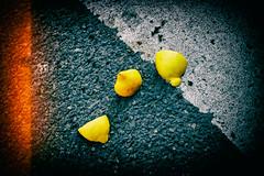 Lemon (Calinore) Tags: paris city ville viieme 7eme ruedelachaise citron lemon agrumes passagepieton fruit color geometry geometrie traces pavement trottoir france